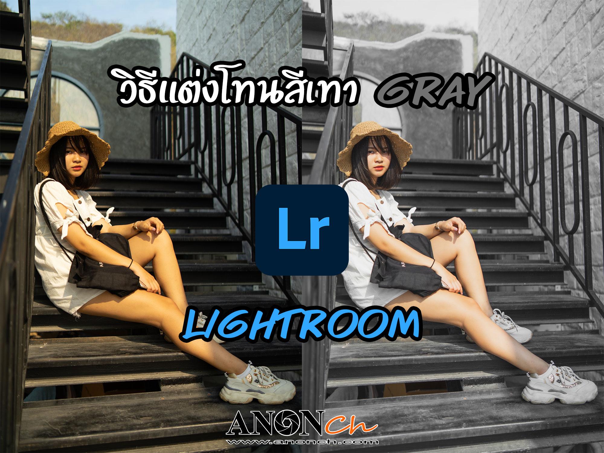 วิธีแต่งโทนสีเทาGray-ด้วย-Lightroom