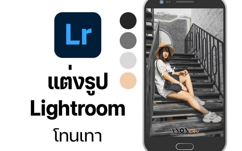 แต่งรูป-Lightroom-โทนเทา